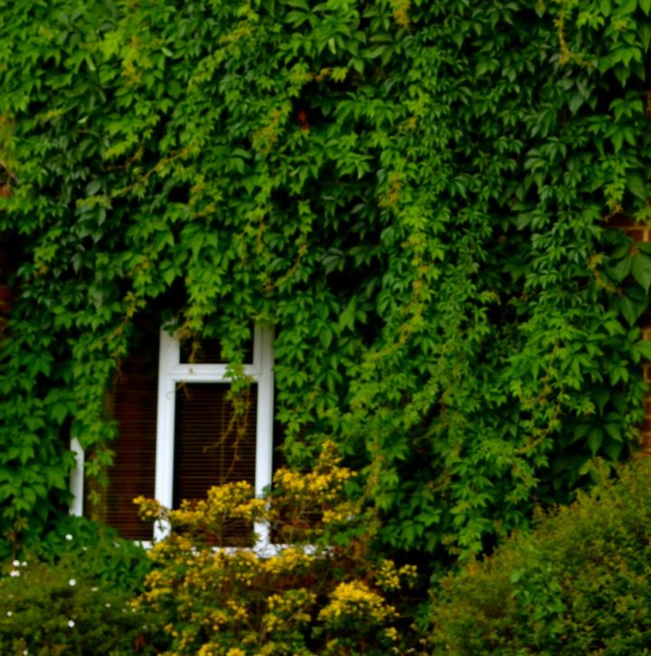 thursdays-door-wears