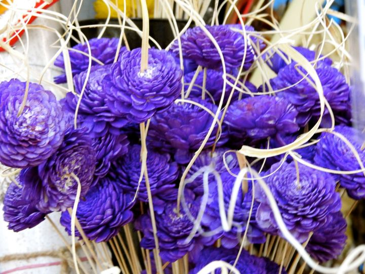 purplehugger